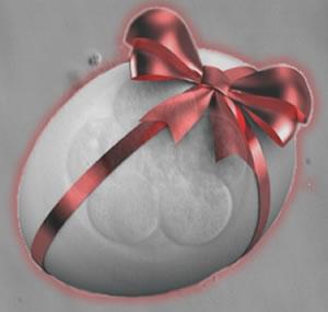 Embryo adoption program in Elite Private Clinic