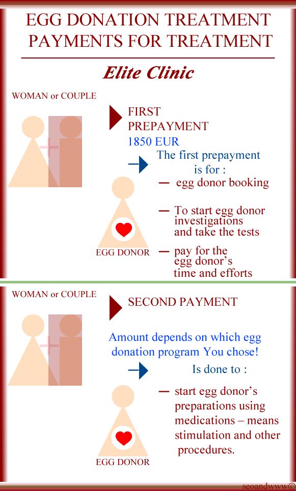 Payments for Your Egg Donation treatment in Elite Clinic
