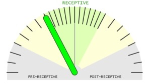 Retceptometer of beReady test: The sample is receptive but the optimal WOI is achieved in 12-24 h